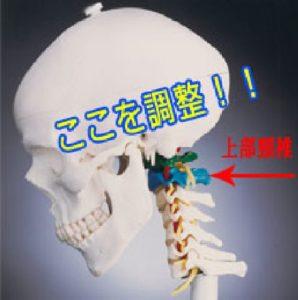 松本式脳幹療法施術場所